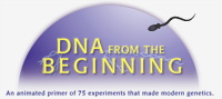 DNA from the Beginning